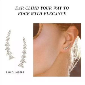 Gold Stella and Dot ear climbers